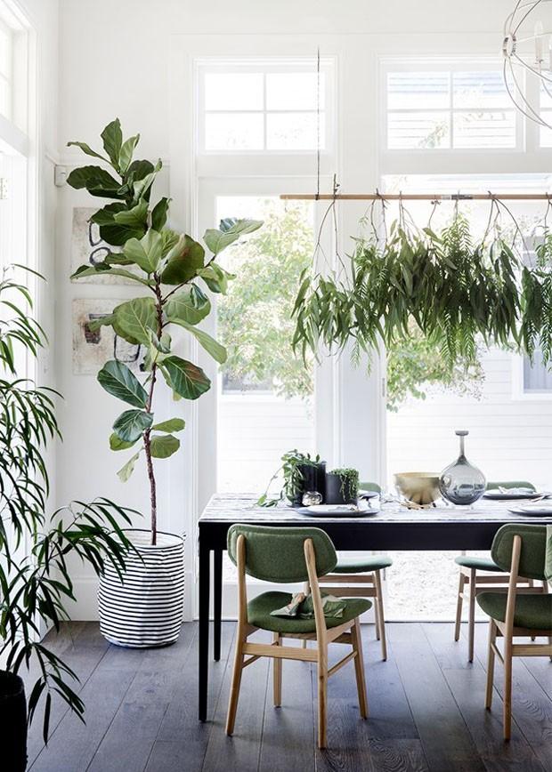 Jardim suspenso: 10 ideias para ter plantas dentro e fora de casa (Foto: Divulgação)