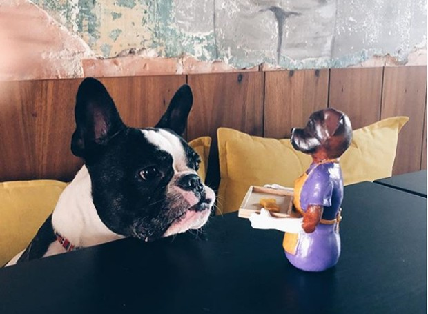 Educadamente, os cachorros recebem o agrado de biscoitinhos (Foto: Instagram/ Reprodução)