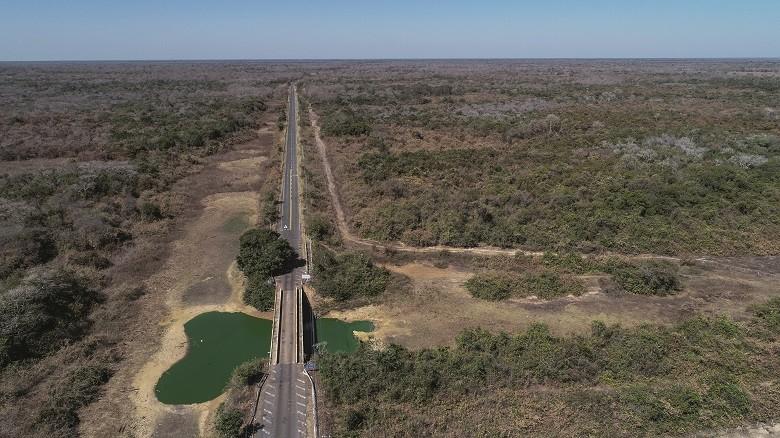 pantanal-ponte-rio-maneta (Foto: José Medeiros/Ed. Globo)