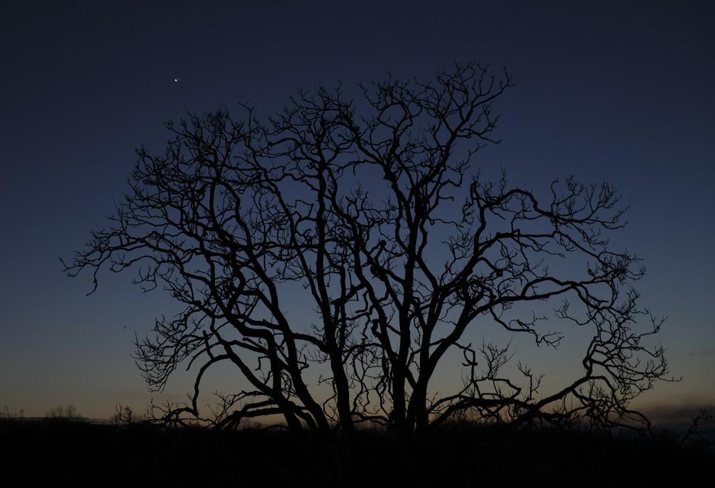 21 de dezembro de 2020 – A grande conjunção de Júpiter e Saturno aparece no céu perto de Chancellorsville em Spotsylvania, Virgínia, EUA — Foto: Mike Morones/The Free Lance-Star/AP