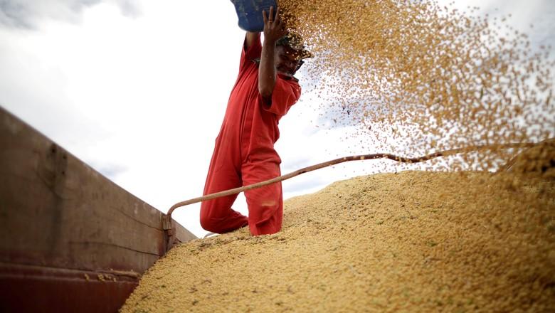 Trabalhador inspeciona grãos de soja em Campos Lindos (TO) 18/02/2018 (Foto: Ueslei Marcelino/Reuters)