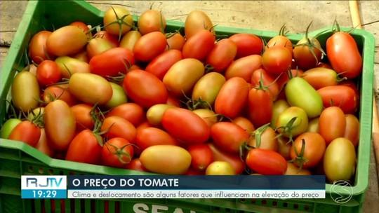 Aumento do preço do tomate chama atenção no Sul do Rio