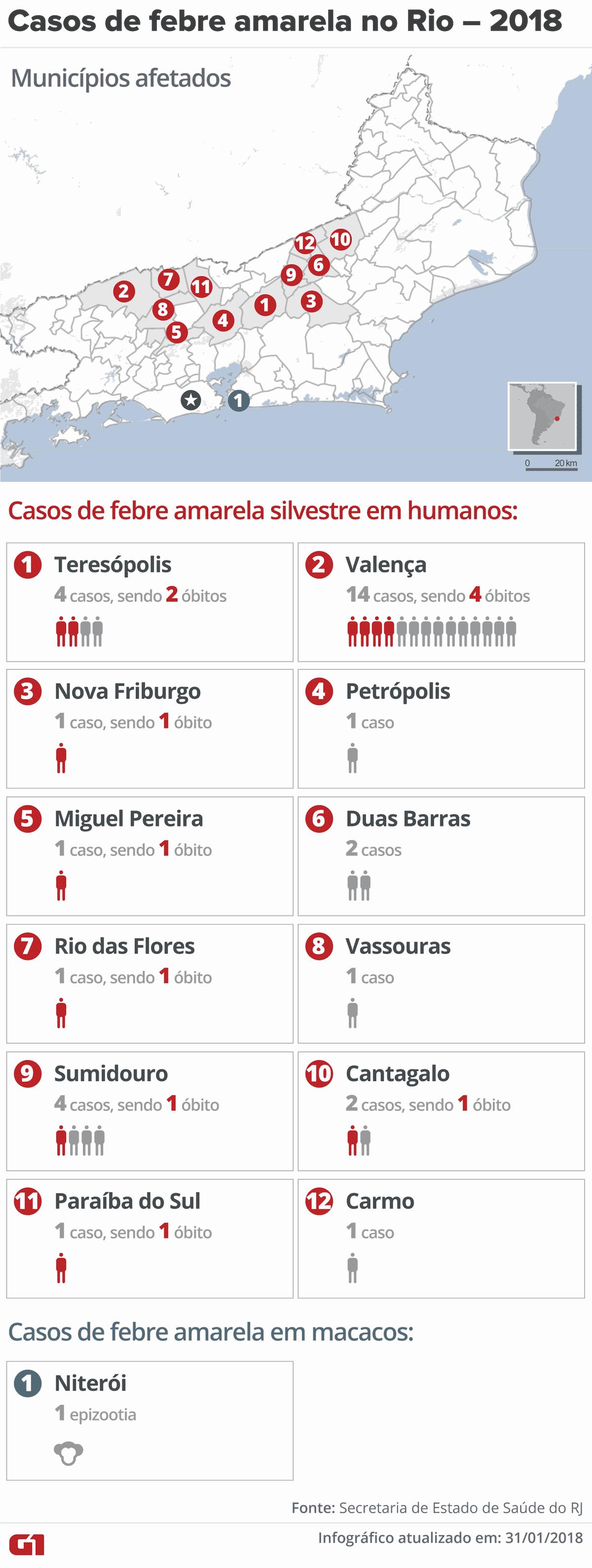 Febre amarela: Secretaria confirma 12 mortes causadas pela doença no RJ