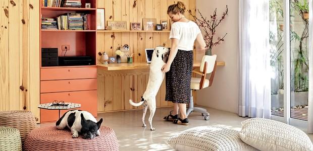 casa-com-pet-cachorro-home (Foto:  )
