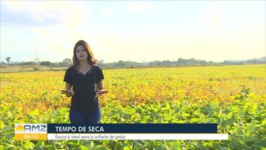 Produtores se preparam para o período de seca nas lavouras, em Rondônia