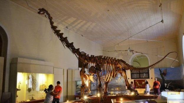 Acervo do museu continha peças extremamente importantes para registro de milhares de anos (Foto: TOMAZ SILVA/AGÊNCIA BRASIL)