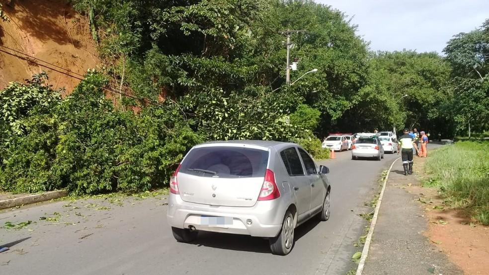 Por conta disso, segundo a Transalvador, o trânsito estava lento na região, por volta das 9h45, depois que uma das duas pistas, no sentido do bairro Boca da Mata — Foto: Cid Vaz / TV Bahia