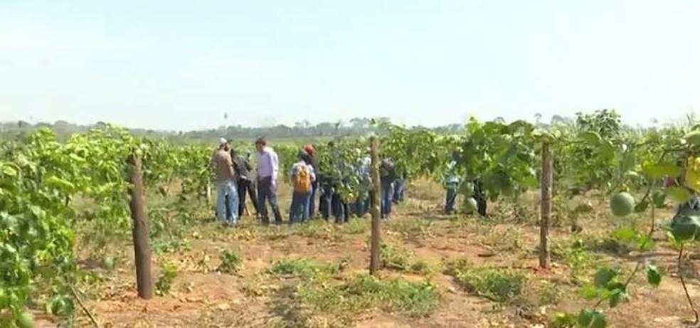 Produtores do Acre estão preocupados com produção agrícola após bloqueio  — Foto: Reprodução