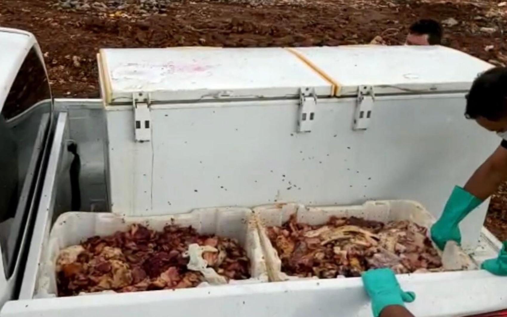 Vigilância Sanitária apreende mais de uma tonelada de carne estragada, em Aparecida de Goiânia