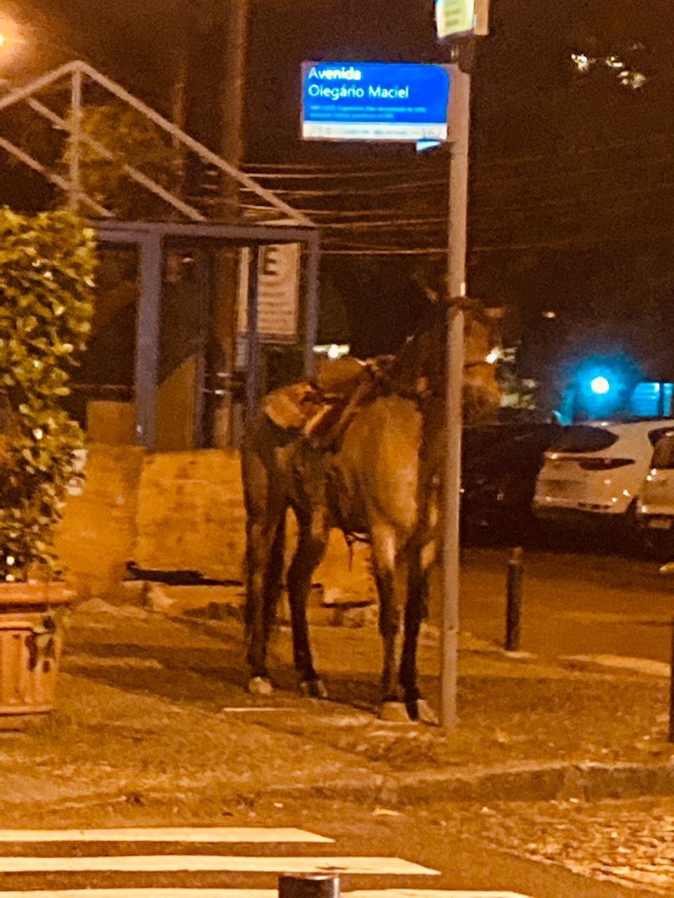 Um grupo de pessoas decide ir a cavalo para bazinho na Olegário Maciel, na Barra
