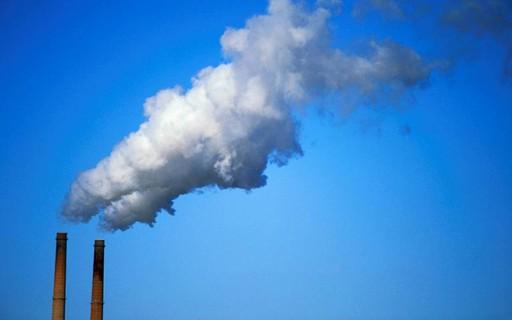 Mercado de créditos de carbono está mais acessível para as pessoas físicas
