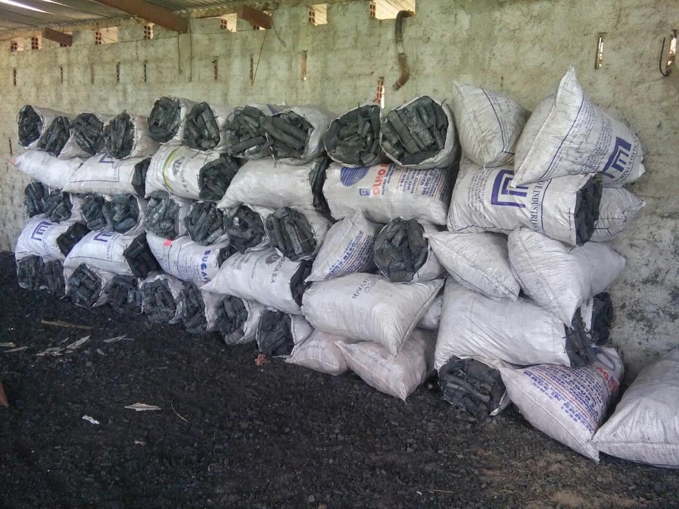 Carvão produzido de forma irregular foi apreendido (Foto: Polícia Militar/Divulgação)