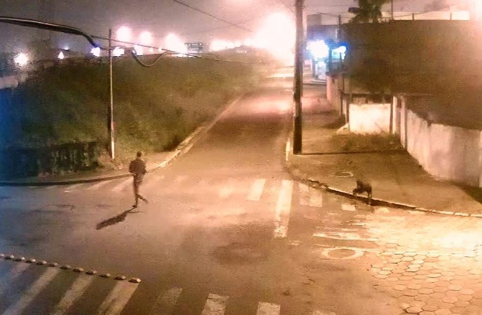Câmeras registraram quando homem joga celular de vítima em bueiro (Foto: Reprodução/TV Tribuna)