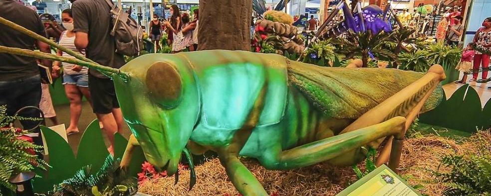 Réplica de insetos— Foto: Foto: Divulgação