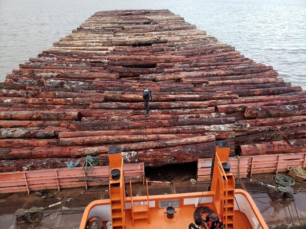 Polícia Federal apreende mais de 2 mil metros cúbicos de madeira nativas do bioma amazônico — Foto: Polícia Federal