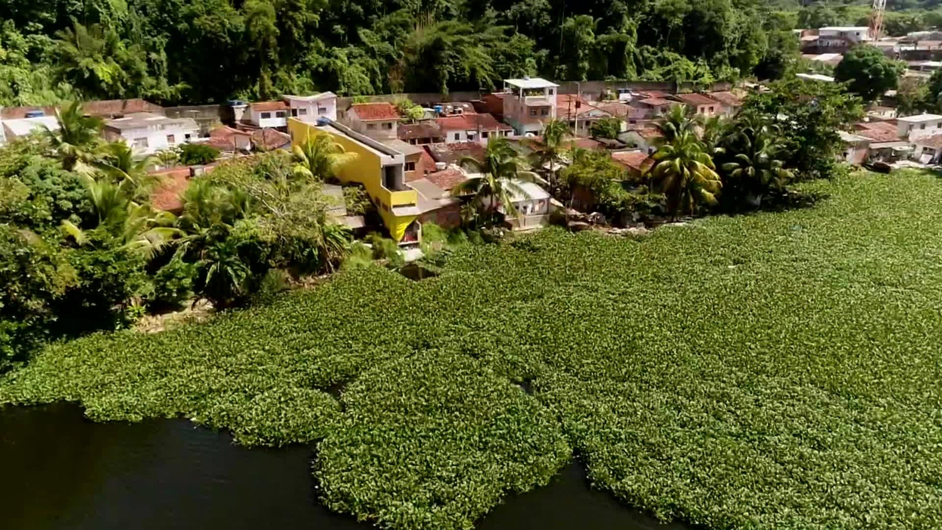 Seis unidades de conservação do Recife ganham planos para ajudar a regularizar uso de áreas verdes