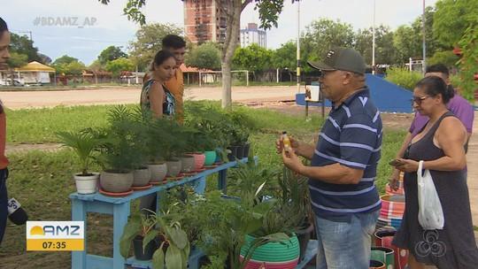 Espécies variadas chamam atenção e são vendidas em praças de Macapá