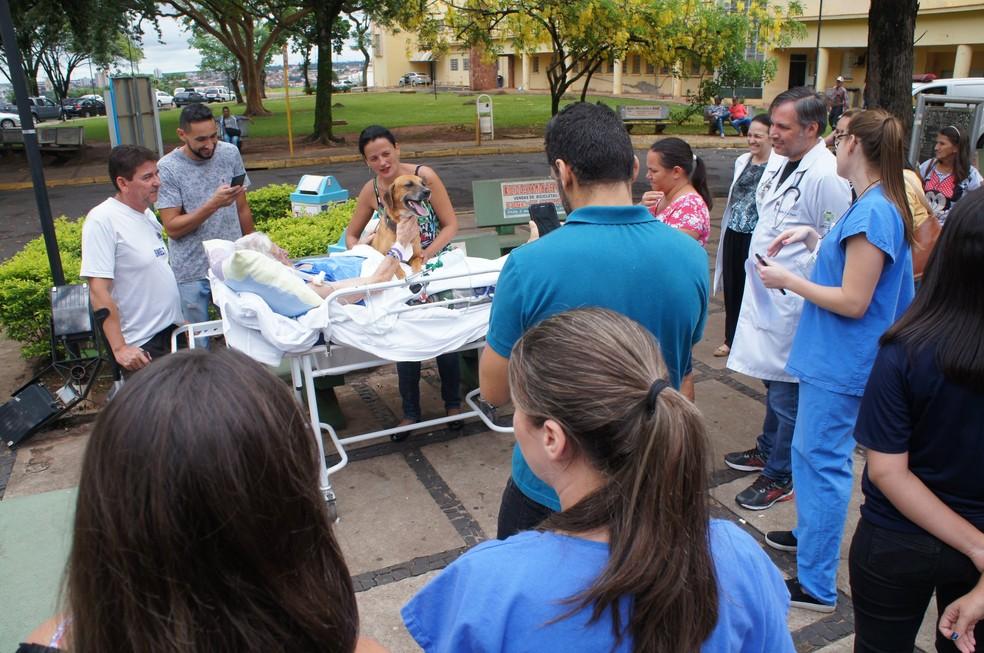 Equipe médica disponibilizou o encontro entre o dono e o animal — Foto: Divulgação/Fundação Padre Albino