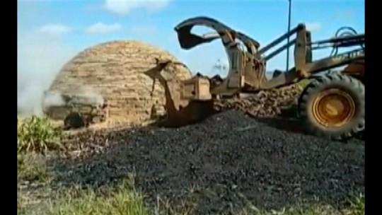 Operação do Ibama e PM destrói mais de 60 fornos de produção ilegal de carvão no Pará