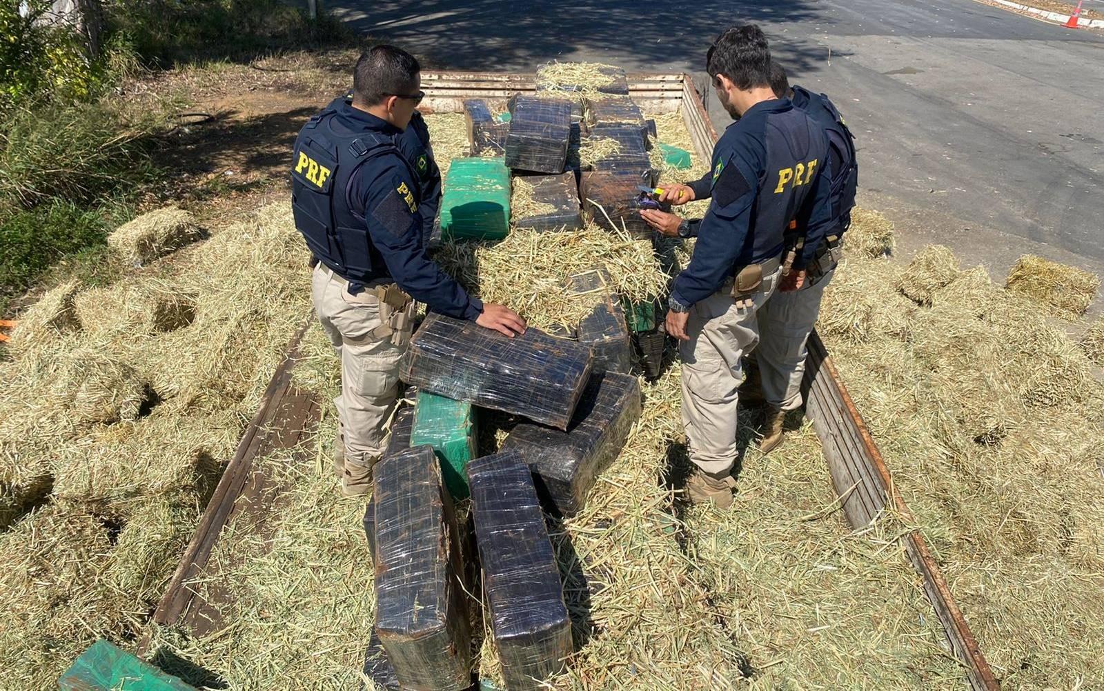 Motorista é preso após ser flagrado com 2.700 kg de maconha escondidas em carregamento de feno na BA