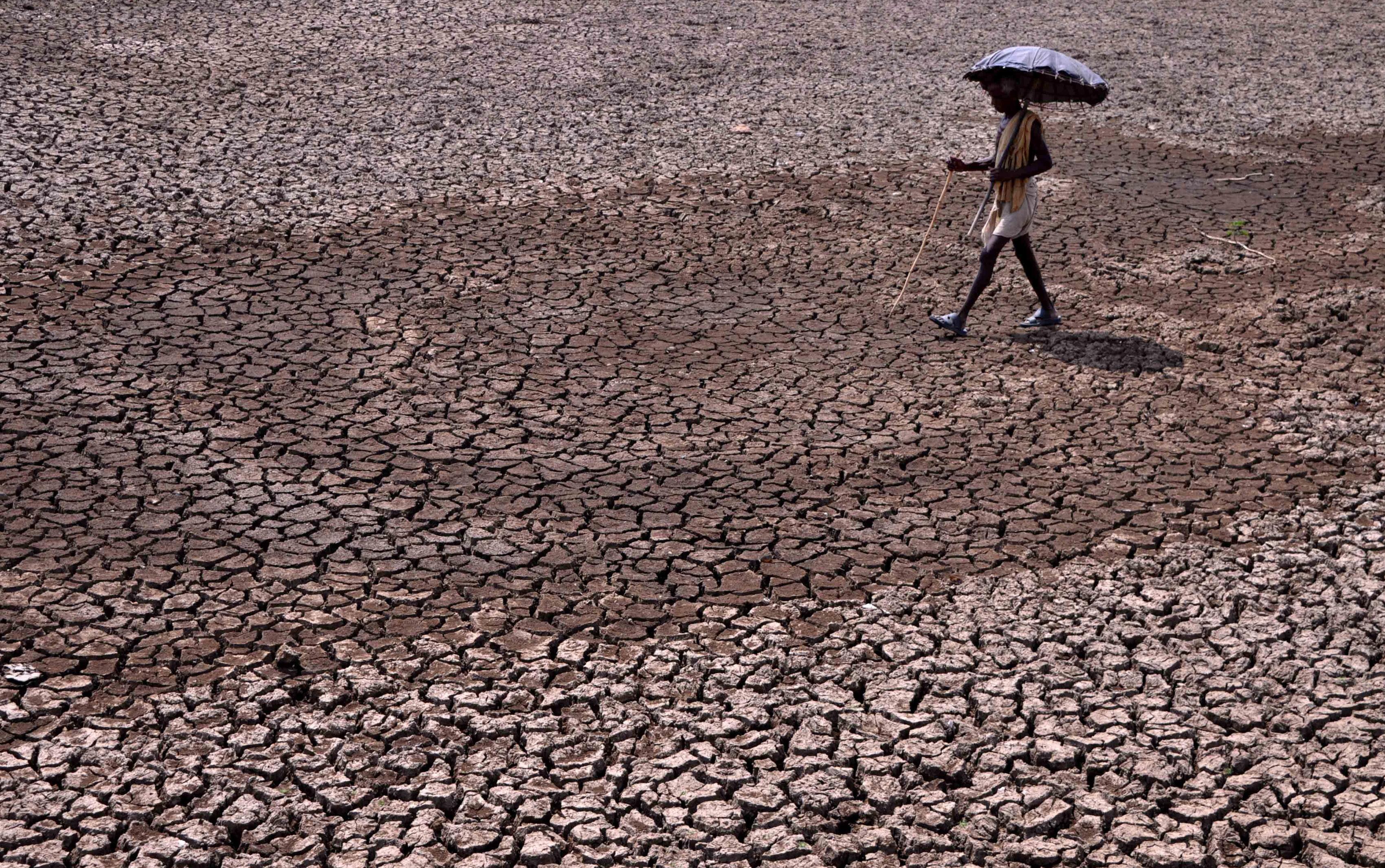 Junho foi o mais quente dos últimos 140 anos na Terra, afirma NOAA - Notícias - Plantão Diário