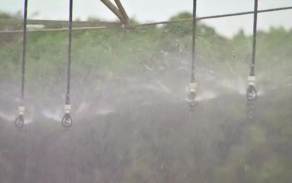 Plantio irrigado cresce mais de 200% em MT — Foto: Reprodução/TVCA