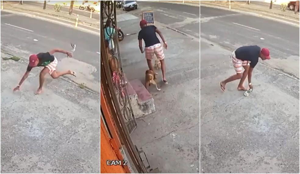 Além de tropeçar e perder o chinelo, o criminoso teve a canela mordida por um cahorro. — Foto: Reprodução
