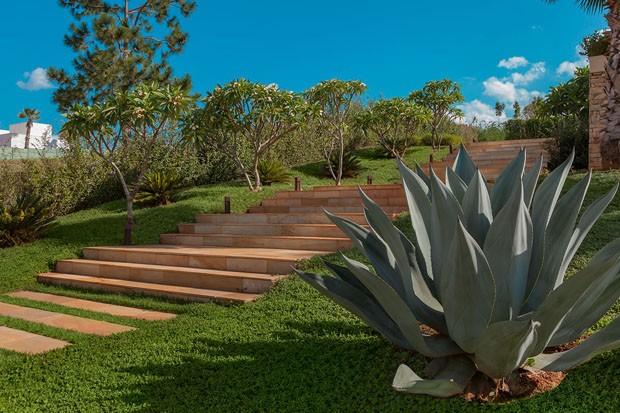 Frutas, flores e texturas: um jardim contemporâneo com ares bucólicos  (Foto: Divulgação)