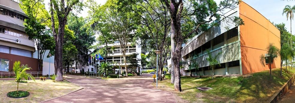 Pesquisa é desenvolvida no Instituto de Ciências Matemáticas e de Computação (ICMC) da USP de São Carlos  — Foto: Nilton Junior/ArtyPhotos