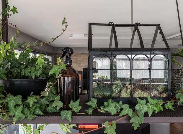 Prateleira suspensa com plantas ajuda a delimitar espaços entre sala de jantar e cozinha (Foto: Evelyn Müller/Divulgação)