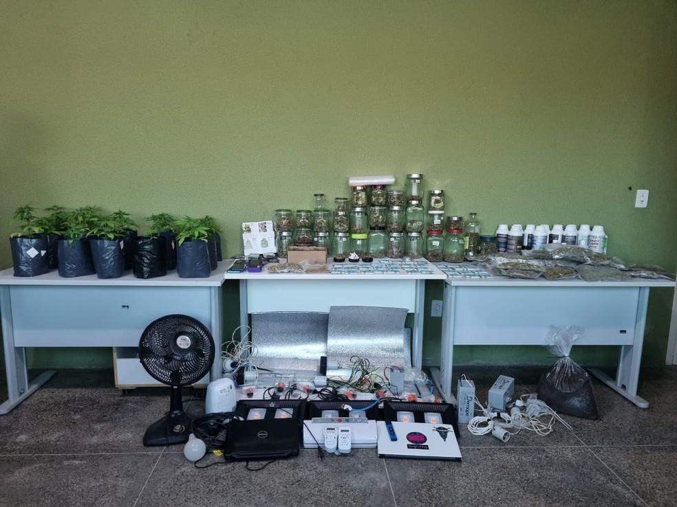 Droga apreendida durante a Operação Suíça Verde — Foto: Divulgação/Depre