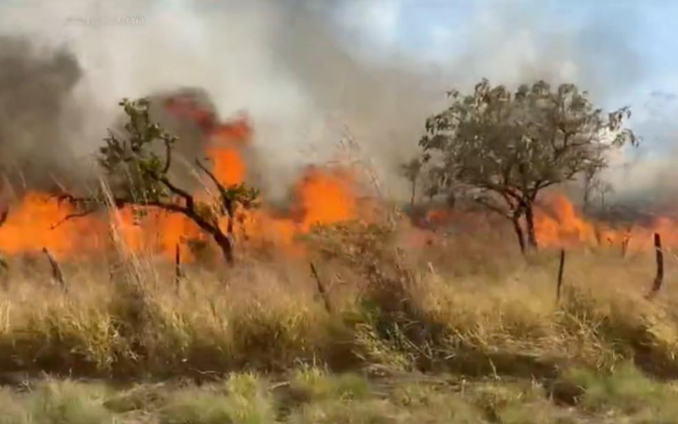 Incêndio na Chapada dos Veadeiros completa 1 semana  — Foto: Reprodução/TV Globo