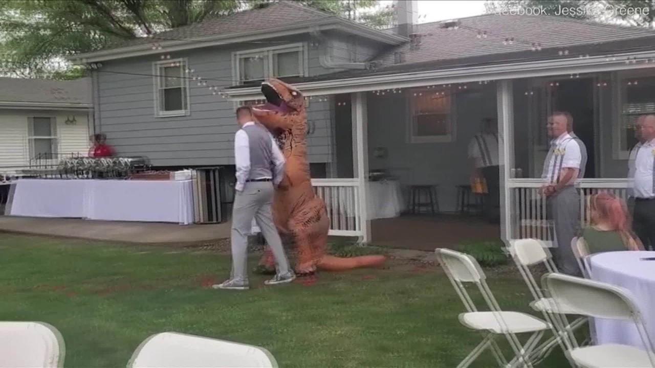 Madrinha se veste de dinossauro no casamento da irmã