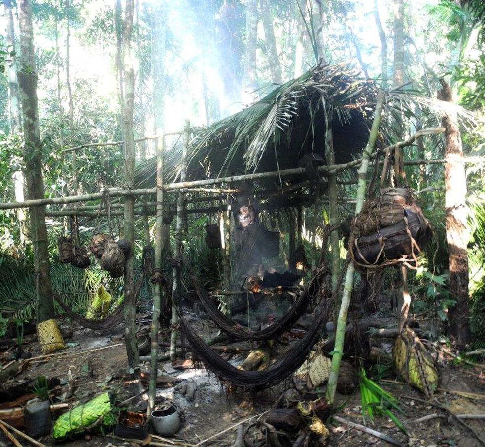 Terra Indígena Kawahiva do Rio Pardo está localizada em Colniza (MT); foto tirada em 2015 — Foto: Jair Candor/Funai