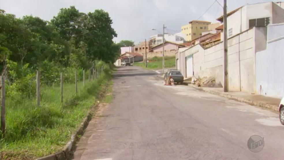 Macaco encontrado na cidade preocupa moradores do risco de febre amarela (Foto: Reprodução / EPTV)