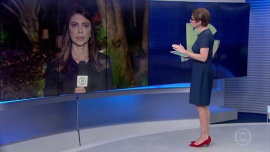 Senadores falam da possibilidade de devolver Coaf ao ministro Sérgio Moro