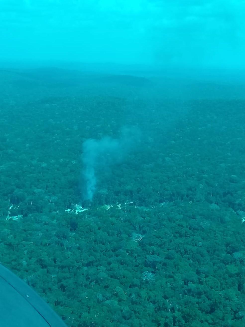 Área desmatada por invasores em reserva — Foto: PF/Divulgação