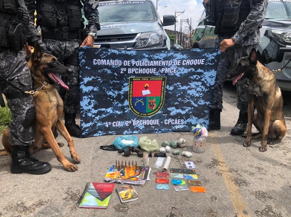 Cães do 2º Batalhão de Policiamento de Choque (CPCães) localizaram o material em uma construção abandonada. — Foto: Polícia Militar/Divulgações