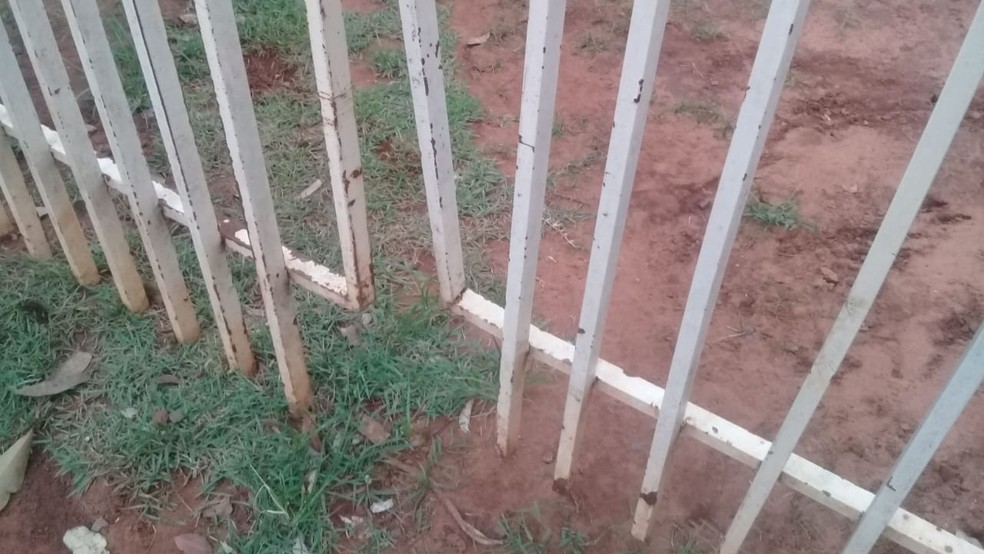 Portão de igreja foi recolocado por fieis após ser arrombado por capivara, em Campo Grande (MS). — Foto: Samara de Figueiredo