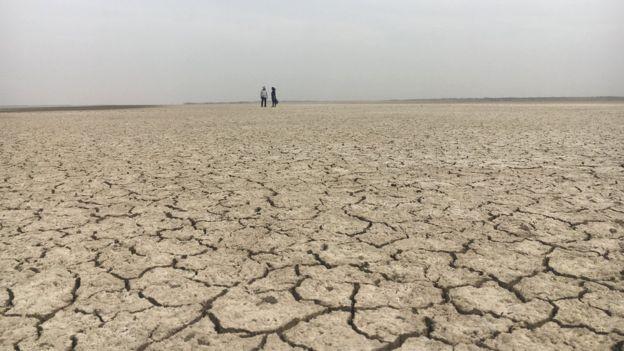 Agricultores sofrem com frequentes perdas causadas pela seca (Foto: BBC News Brasil)