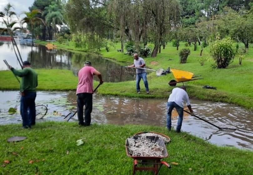 Peixes mortos são retirados de lago em parque de Garça