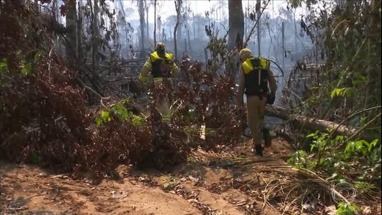 Produtores têm prejuízos com incêndio que devastou pastos em RO