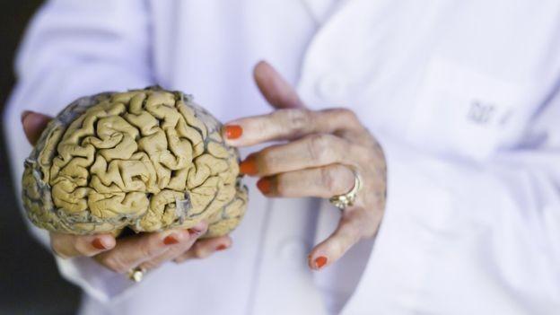 Diamond é considerada uma das fundadoras da neurociência moderna (Foto: UC BERKELEY PHOTOS/ELENA ZHUKOVA, via BBC News Brasil)