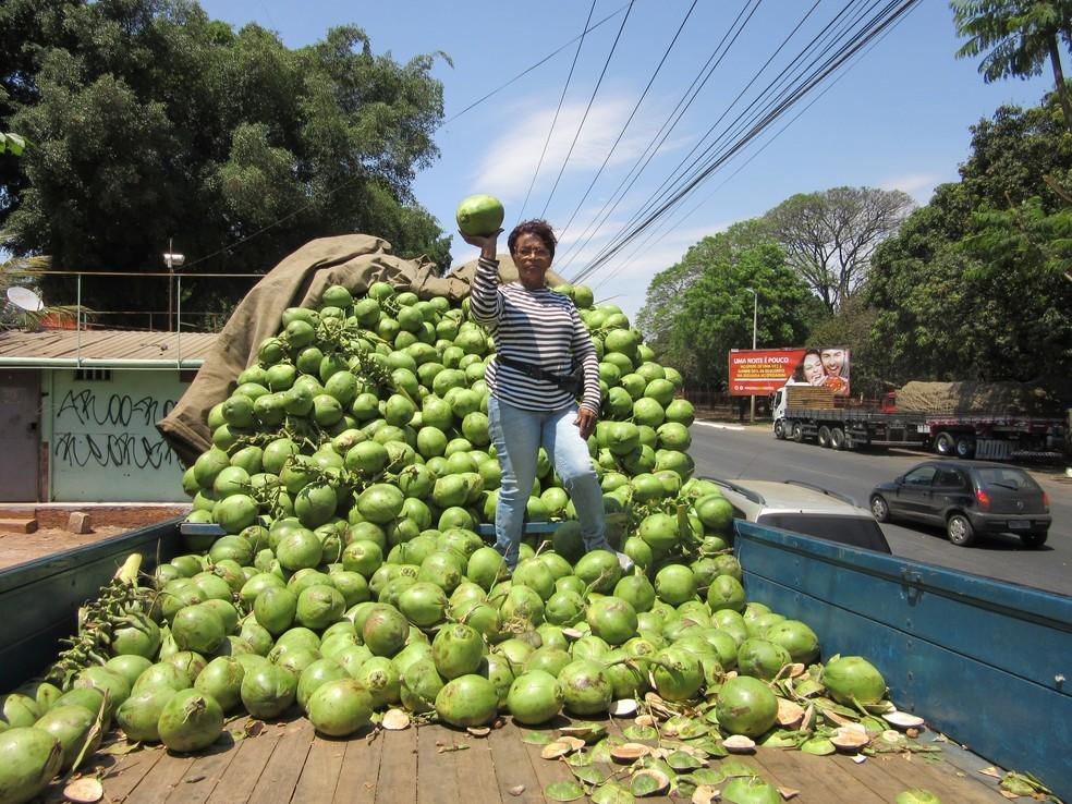 Pedrina Rodrigues em cima de carreta com cocos no DF; ela passou a vender 7 mil unidades em até três dias (Foto: Raquel Morais/G1)
