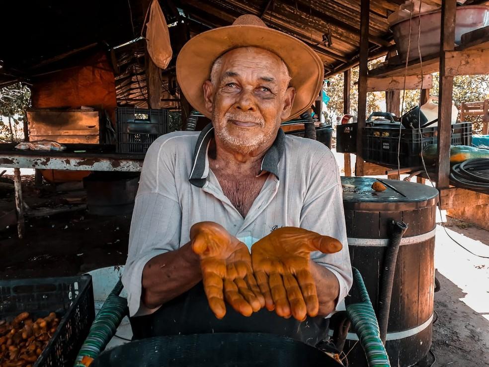 Seu Dito é um dos pioneiros do Assentamento São Gabriel. A produção da família é distribuída nas feiras livres de Primavera do Leste — Foto: Divulgação