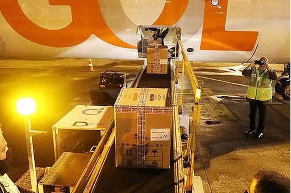 Novo lote de vacina da Pfizer chegou ao Recife, nesta terça (8) — Foto: Hélia Scheppa/Governo de Pernambuco/Divulgação