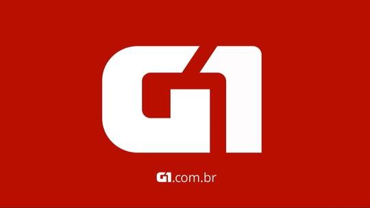 Nenê de Vila Matilde apresenta fantasias para homenagear Curitiba