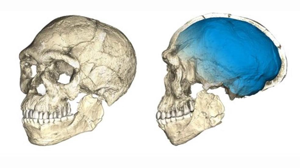 Homo Sapiens teria surgido cerca de 100 mil anos antes do que se pensava, segundo nova descoberta (Foto: Philipp Gunz/MPI EVA Leipzig)