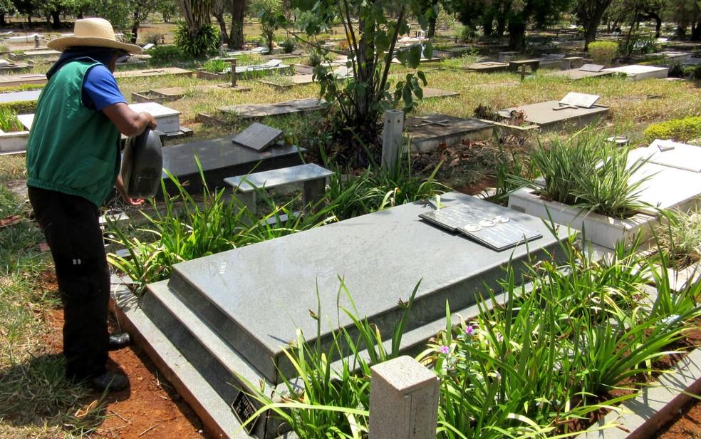 Jardineiro autônomo cuida de plantas em jazigo de cemitério no DF (Foto: Raquel Morais/G1)
