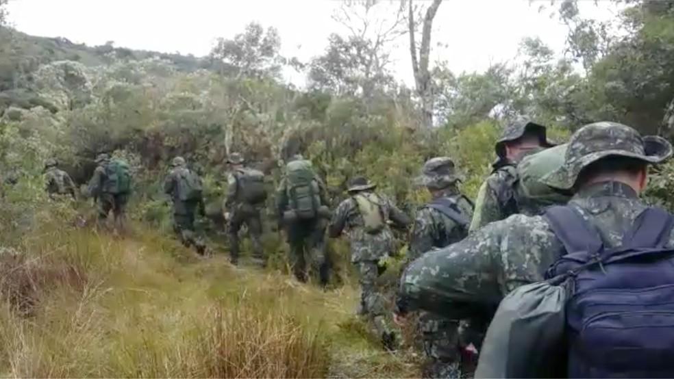 Vinte homens do COE se dividem em patrulhar para fazer varredura na mata — Foto: COE/Divulgação